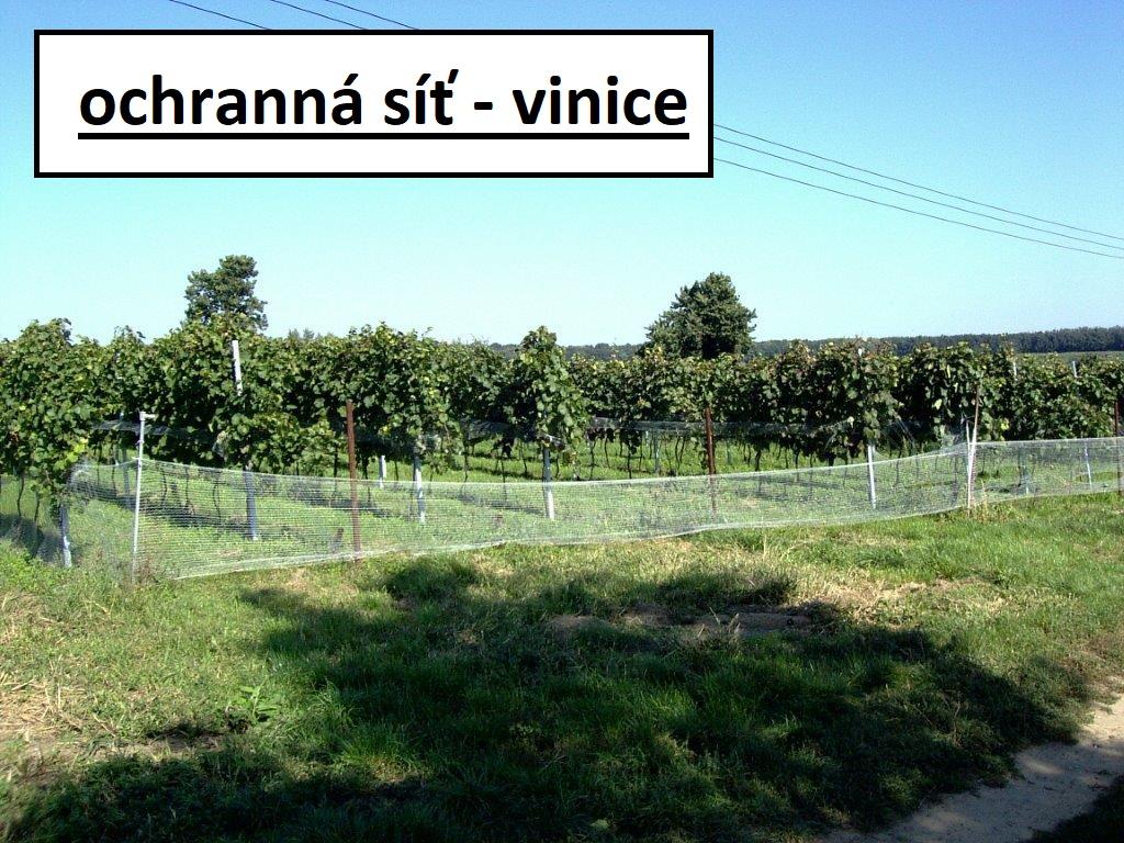 Ochranné sítě vinic, vinohradů proti špačkům