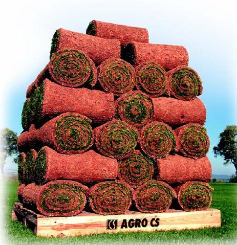 Role trávníkového koberce