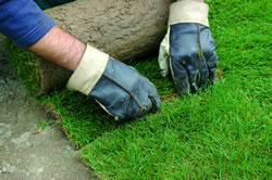 5, Přebytečné části drnů (v rozích, na okraji plochy atd.) odřežte ostrým nožem. Při pokládce nevstupujte na trávníkový drn.